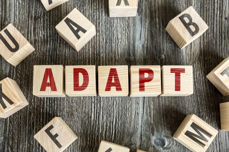 adapt_block-768x512